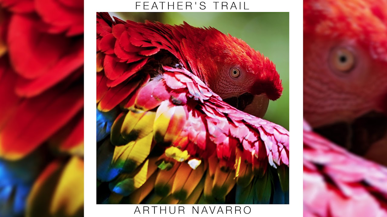 Arthur Navarro - Feather's Trail